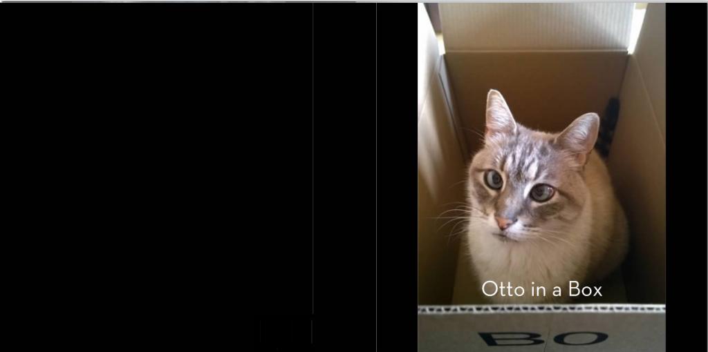 OttoBoxCover